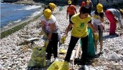 La manifestazione 'Spiagge e fondali puliti 2015' prevista per giovedì 4 giugno 2015